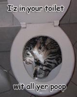 i'z in your toilet wit all yer poop myspace, friendster, facebook, and hi5 comment graphics