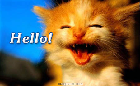 hello smiling cat myspace, friendster, facebook, and hi5 comment graphics