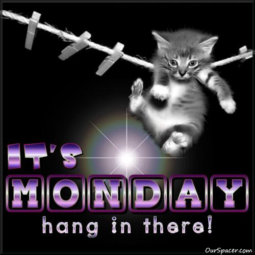 It's Monday, hang in there myspace, friendster, facebook, and hi5 comment graphics