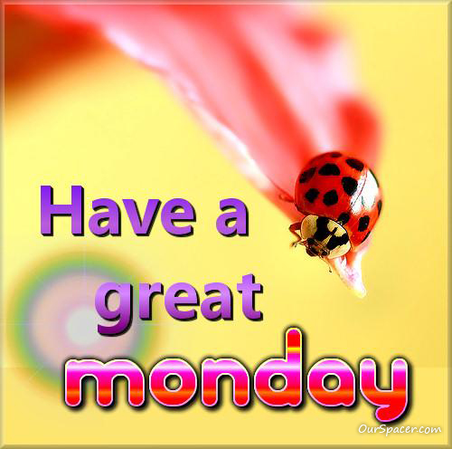 Ladybug on a flower, have a great Monday myspace, friendster, facebook, and hi5 comment graphics