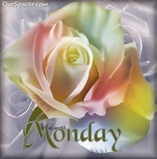 Monday White Rose myspace, friendster, facebook, and hi5 comment graphics