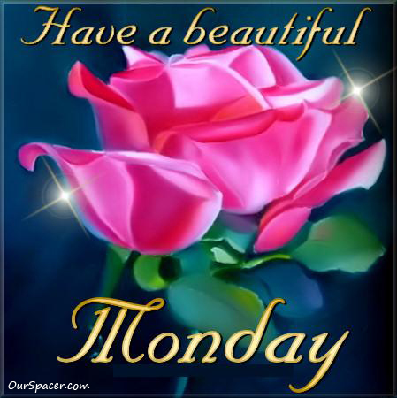 Pink rose, have a beautiful Monday myspace, friendster, facebook, and hi5 comment graphics