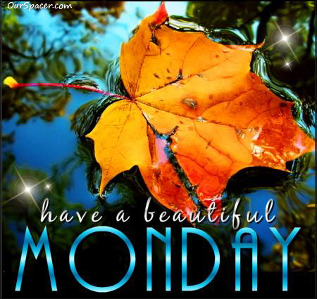 Pretty leaf, have a beautiful Monday myspace, friendster, facebook, and hi5 comment graphics