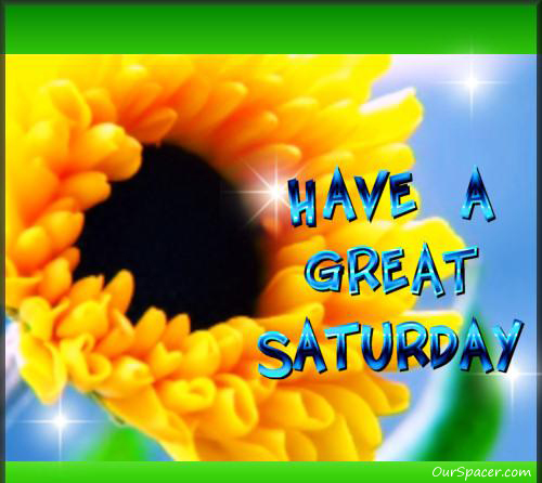Have a great Saturday dandelion myspace, friendster, facebook, and hi5 comment graphics