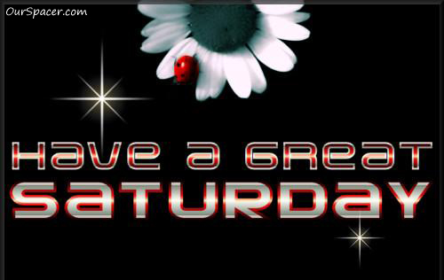 White flower, red ladybug, have a great Saturday graphics