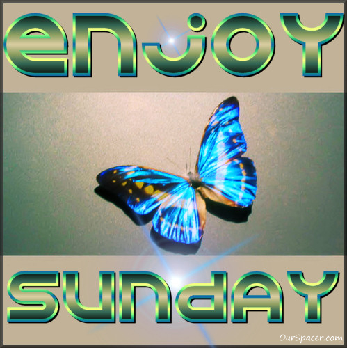 Blue butterfly, enjoy Sunday myspace, friendster, facebook, and hi5 comment graphics