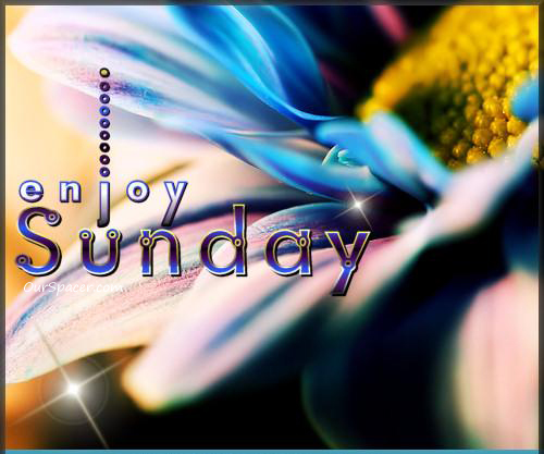 Enjoy Sunday blue flower yellow nectar myspace, friendster, facebook, and hi5 comment graphics