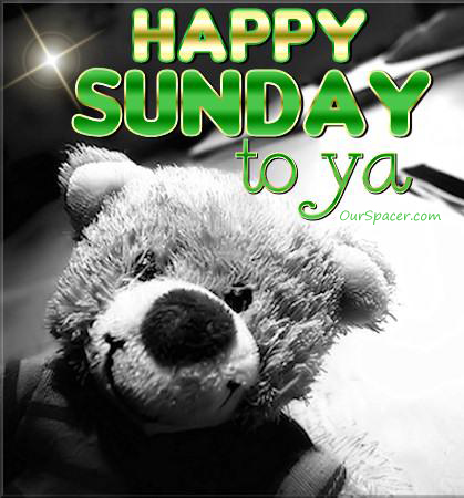 Happy Sunday to ya teddy bear graphics