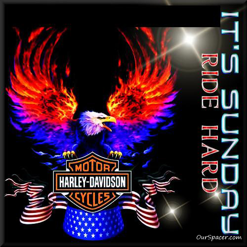 Harley Davidson Motor Cycles, it's Sunday, ride hard myspace, friendster, facebook, and hi5 comment graphics