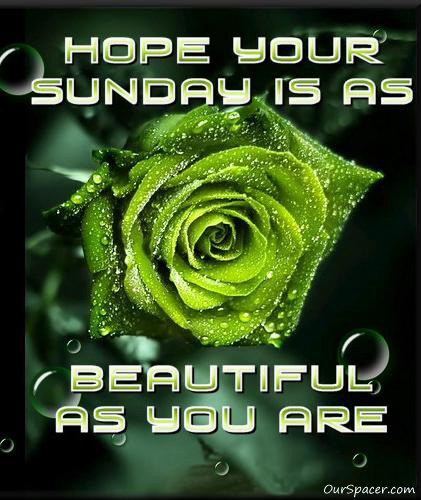 Hope your Sunday is as beautiful as you are myspace, friendster, facebook, and hi5 comment graphics