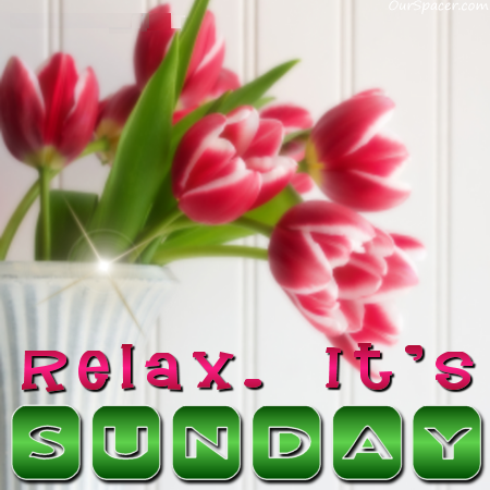 Relax, it's Sunday, have red flowers myspace, friendster, facebook, and hi5 comment graphics